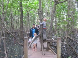 The children Martin and China in the mangroves